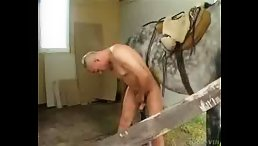 Dirty guy ass fucking horse free
