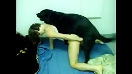 Amateur dog sex fucking from behind